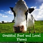 Grassfed Beef and Local Farms