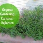 Organic Gardening Carnival: Reflection