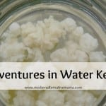 Adventures in Water Kefir