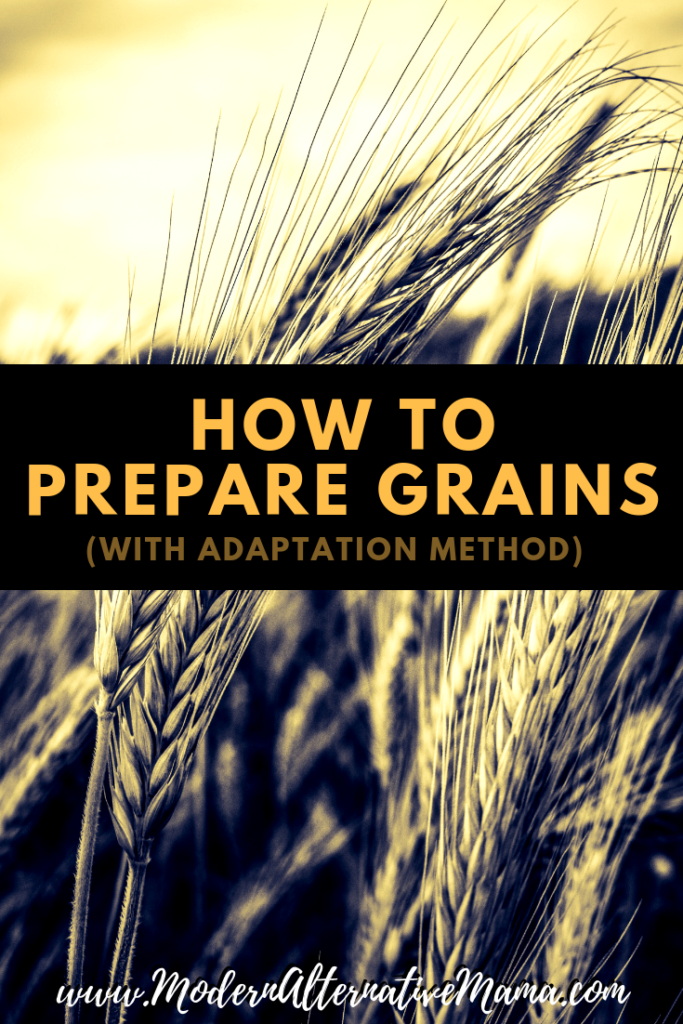 How to Prepare Grains (With Adaptation Method)