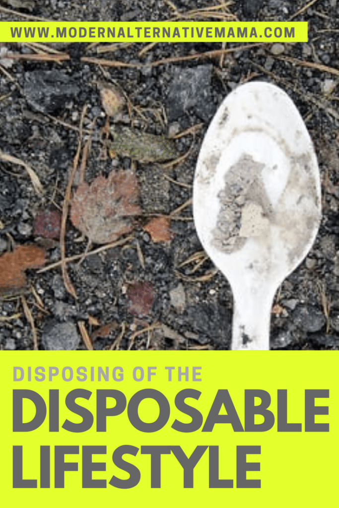 disposing of the disposable lifestyle