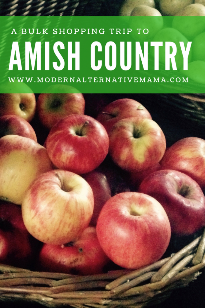 a bulk shopping trip to amish country