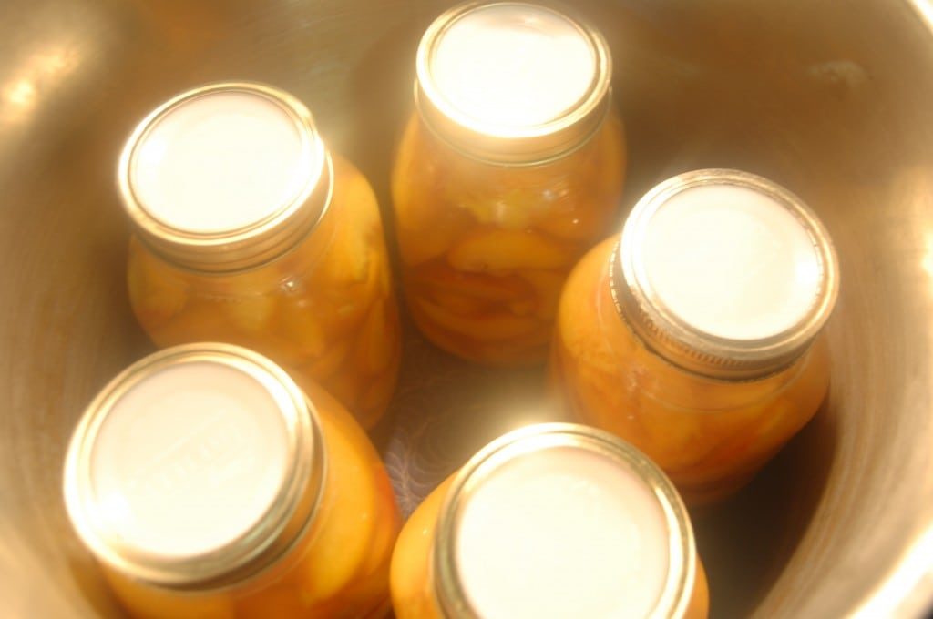 jars in pot