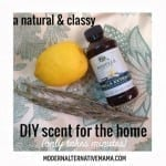 A Natural & Classy DIY Scent for the Home