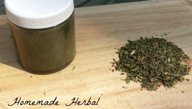herbal prenatal vitamins