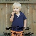How to Tantrum-Proof Your Toddler