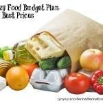 food budget plan