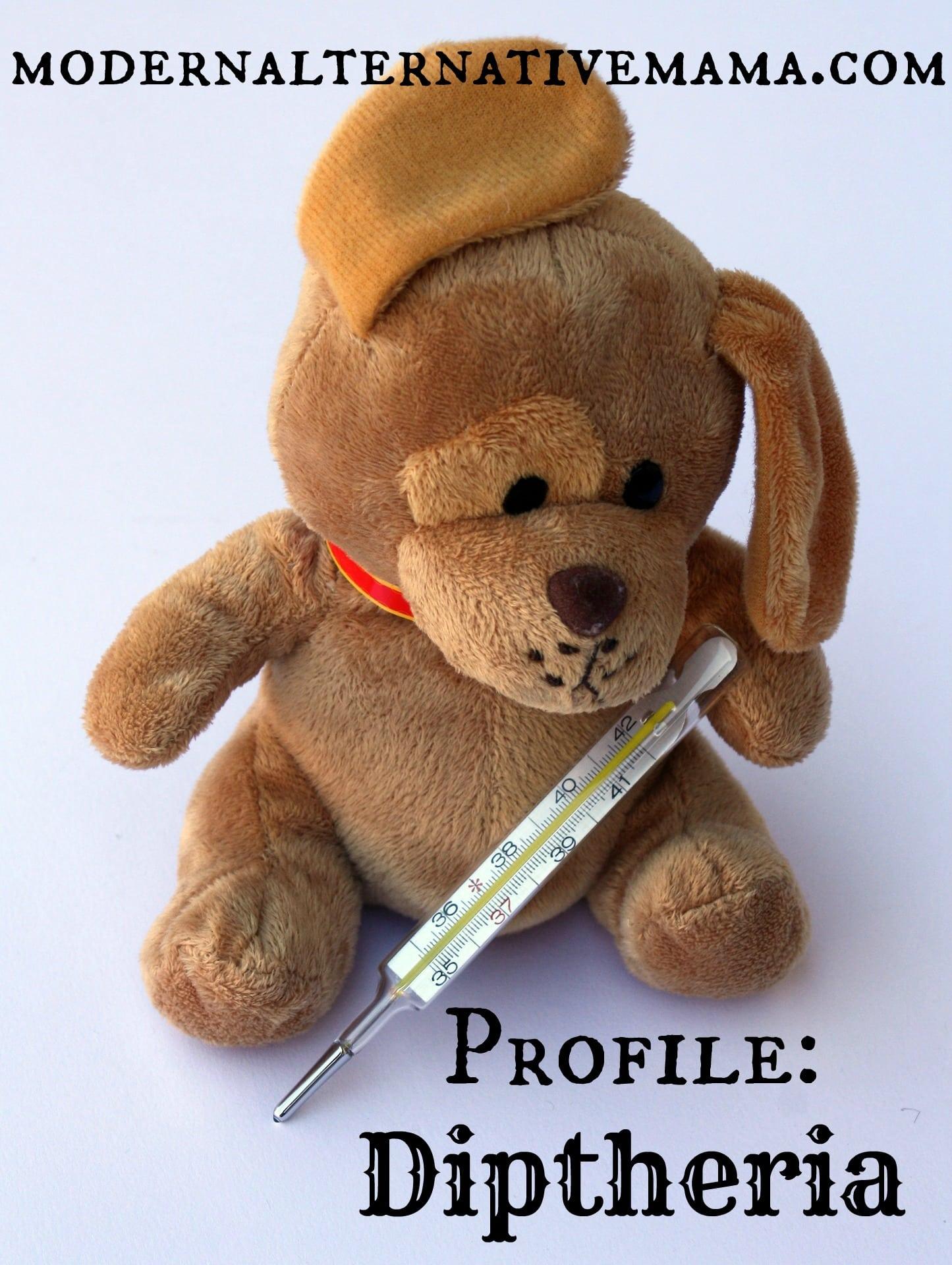 teddy-242868_1920