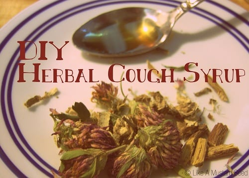 DIY Herbal Cough Syrup by Jasmine Bass - MAH