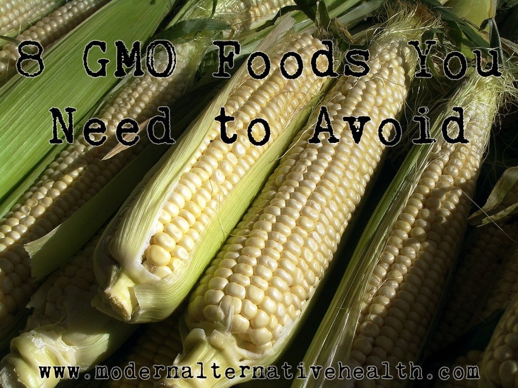 8 GMO Foods You Need to Avoid