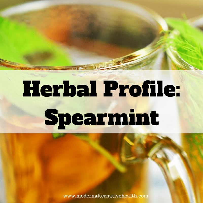 Herbal Profile: Spearmint