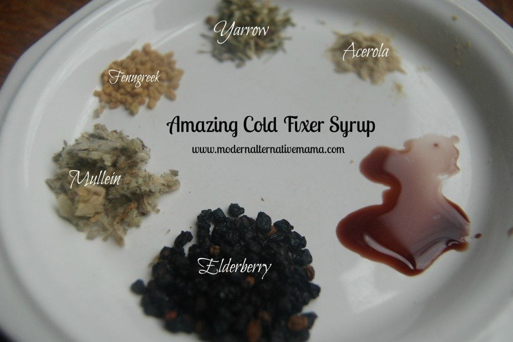elderberry syrup 4 edit2