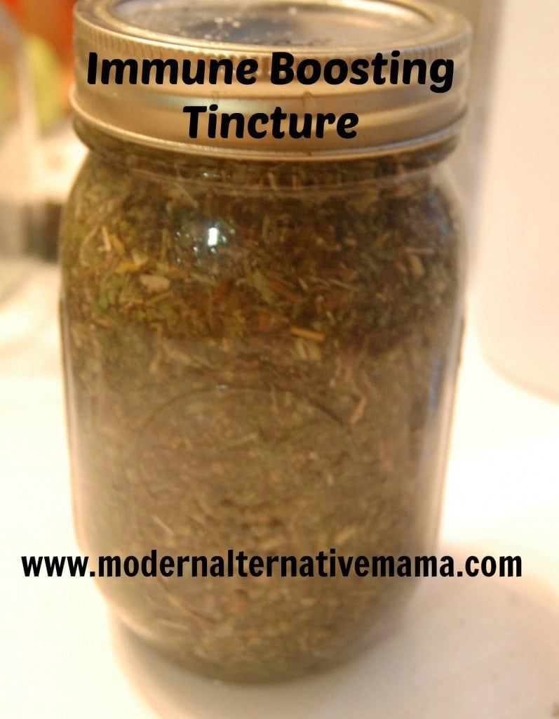 Monday Health & Wellness: Immune Stimulating Tincture