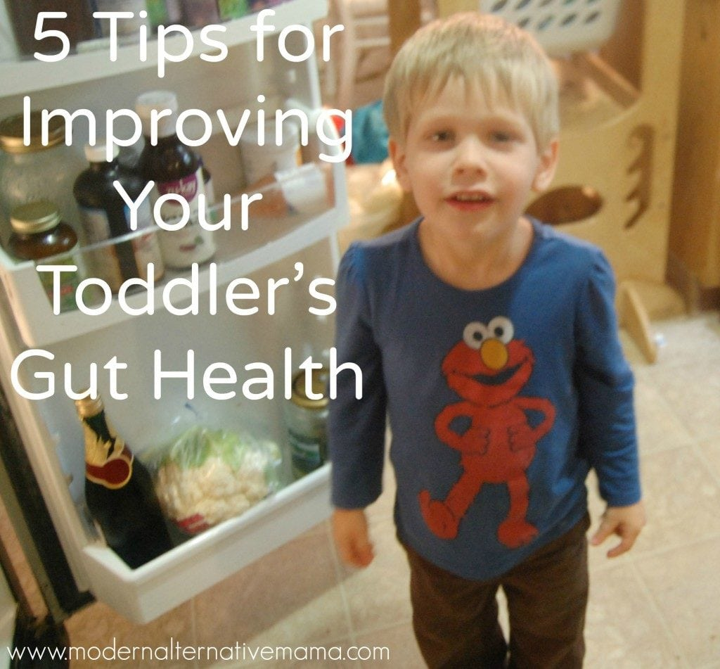 toddler's gut health